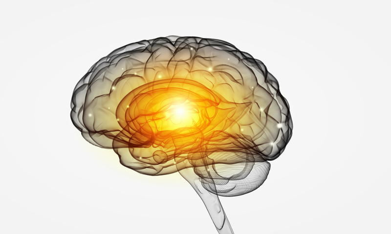 nootropics and fluid intelligence